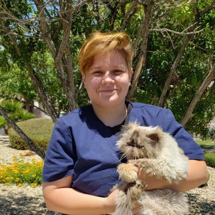 Aspagia</br> Kennel Attendant  photo